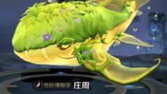 王者荣耀:庄周奇妙博物学皮肤到来 看完特效确认是酸菜鱼本菜了