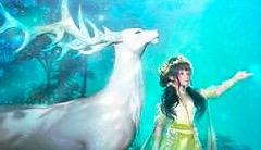 与萤火虫共舞 《古剑奇谭OL》五月主题月开启!